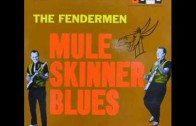 """Mule Skinner Blues"" by The Fendermen"