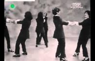 Alibabki – Obladi Oblada (1969)