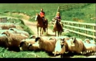 Paul & Linda McCartney – Uncle Albert  / Admiral Halsey [High Quality]
