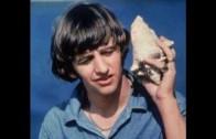 The No-No Song ~Ringo Starr