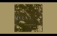 Wilki – Nie zabiję nocy [official audio]