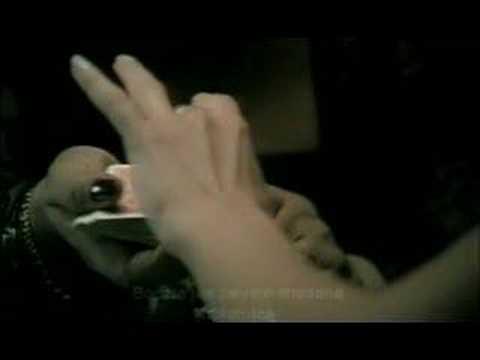 """Cesaria Evora feat. Kayah  """"Embarcacao"""""""
