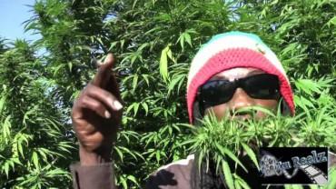 Marlon Asher – Ganja Cowboy [OFFICIAL VIDEO] By TRU REELZ PROD.